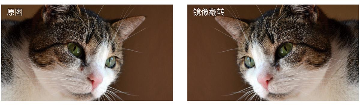4K-中文-20.jpg